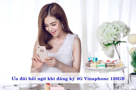 uu-dai-bat-ngo-khi-dang-ky-4g-vinaphone-120gb-0
